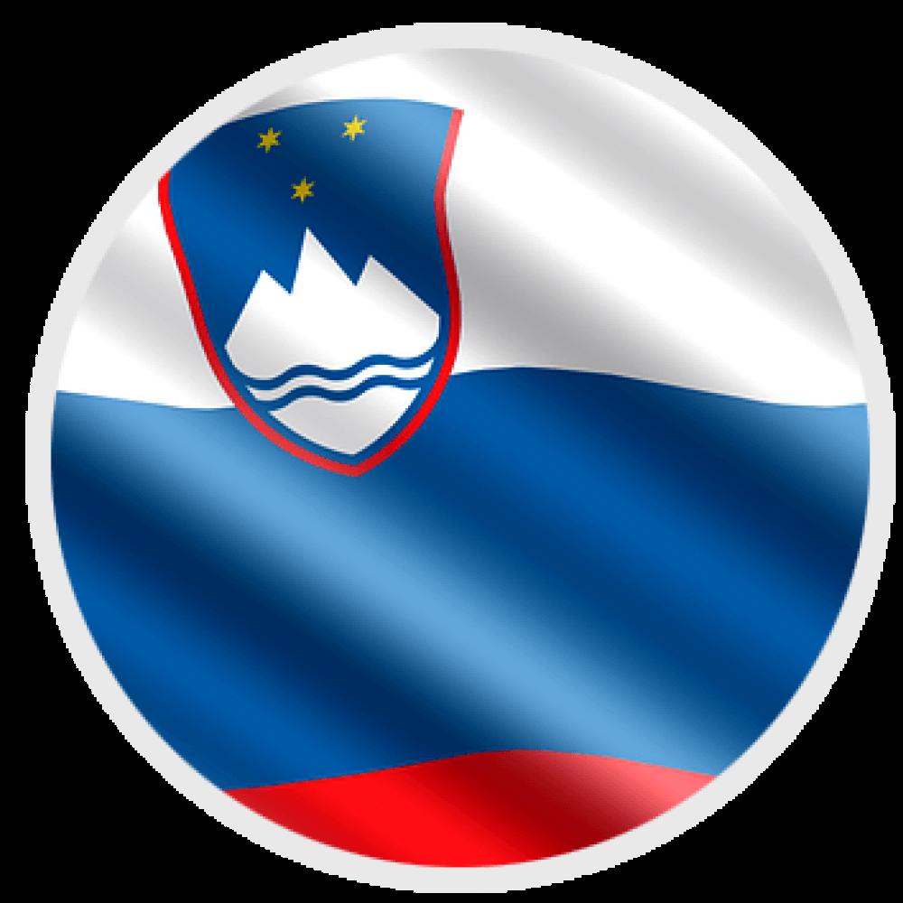 si-flag-logo.png